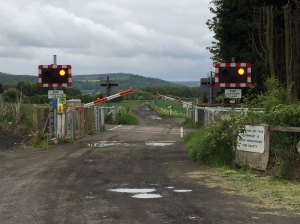 Rural Crossing