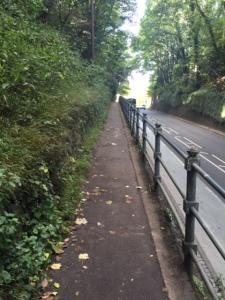 Narrow path is narrow.